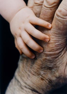 Hand of Baby on Senior Hand